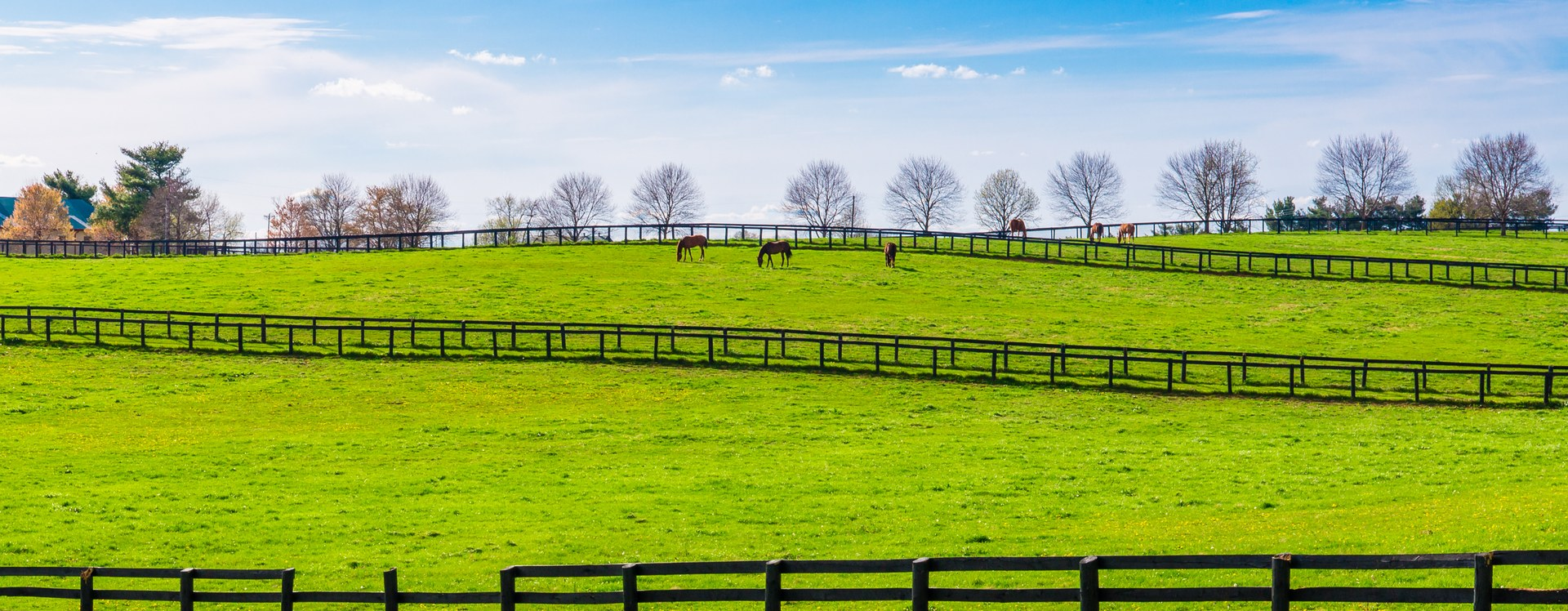 What you need to know before moving to Kentucky