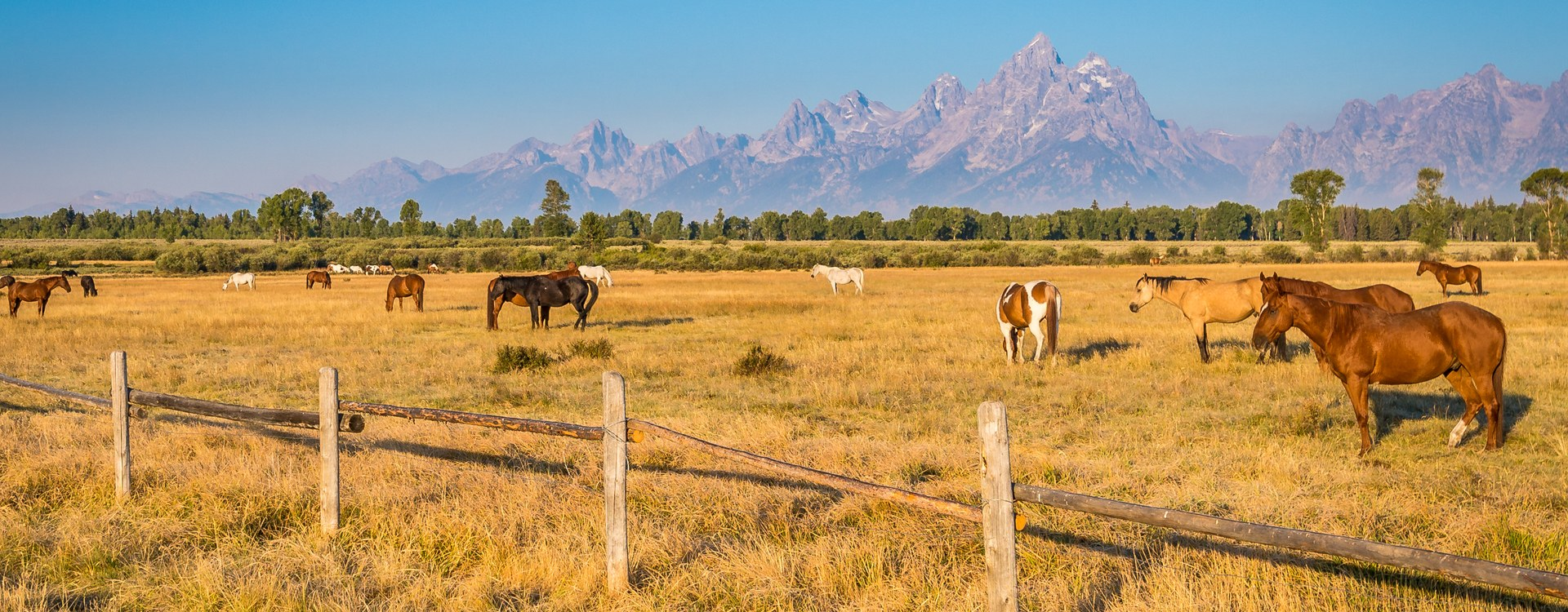 What you need to know before moving to Wyoming